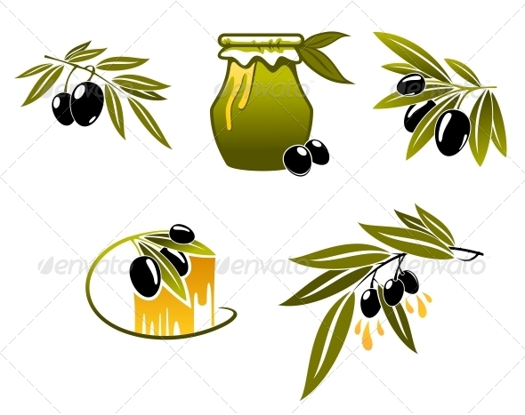 GraphicRiver Olive Oil and Branchs 5825530