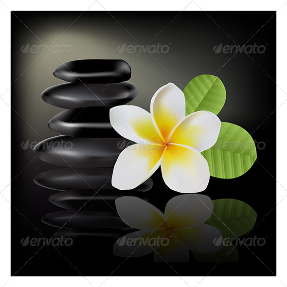 GraphicRiver Frangipani Flower On Dark Background 5829072