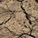Cracked Soil 1 - 3D Texture - 3DOcean Item for Sale