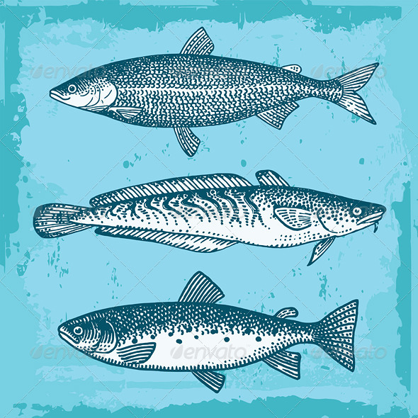 GraphicRiver Set of Fishes Vector 5833639