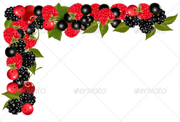 GraphicRiver Frame made of Berries 5833720