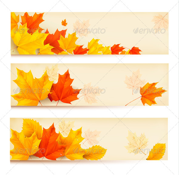 GraphicRiver Three Autumn Banners with Colorful Leaves 5833735