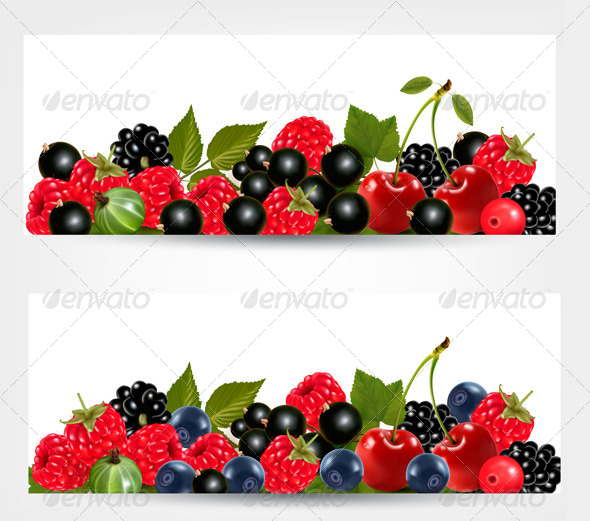 Two Banners with Delicious Ripe Berries