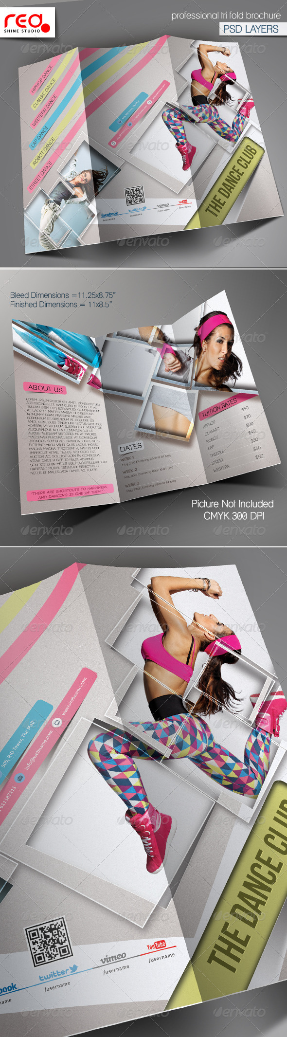 GraphicRiver Dance Academy Trifold Brochure Template 5838245