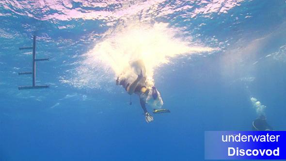 Divers Preparing to Dive