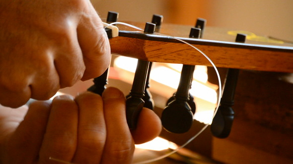 Luthier Placing a String