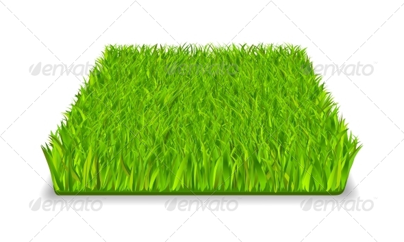 GraphicRiver Green Grass 5848866