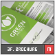 Eco - Trifold Brochure - GraphicRiver Item for Sale