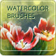 15 Watercolor Handmade Brushes - GraphicRiver Item for Sale