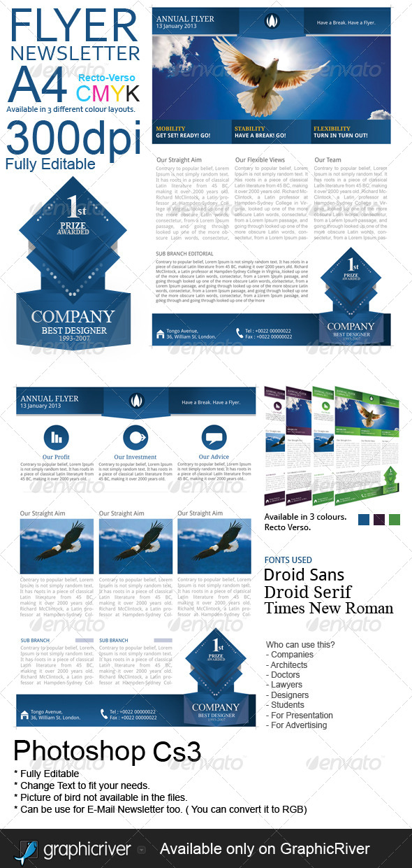 GraphicRiver Corporate Flyer Newsletter 5798054