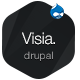 Visia - Responsive One Page Drupal Theme - ThemeForest Item for Sale