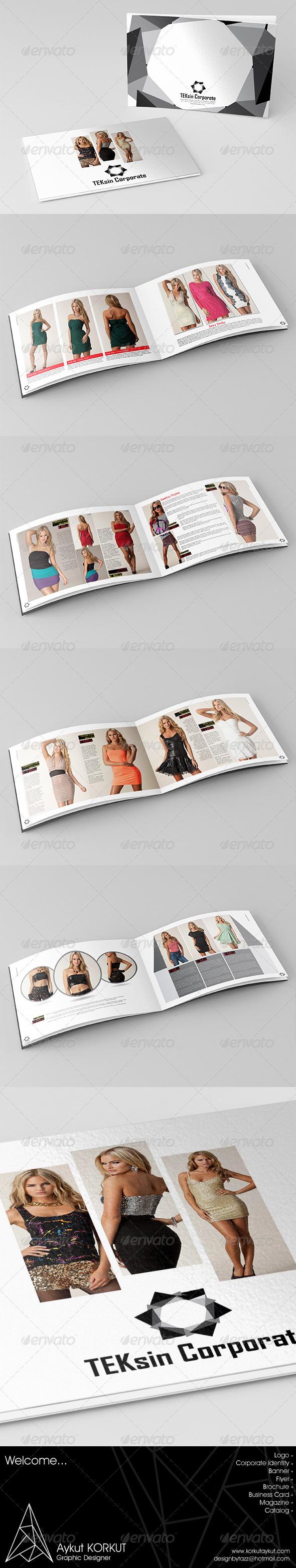 GraphicRiver Teksin Corporate Catalog Template 5860872