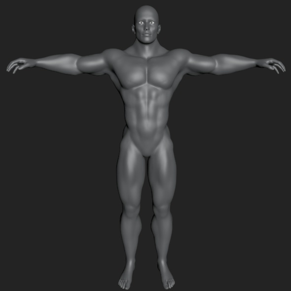 HQ Male Body - 3DOcean Item for Sale