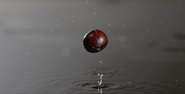 VideoHive Cranberry is Falling on a Wet Surface 9846992