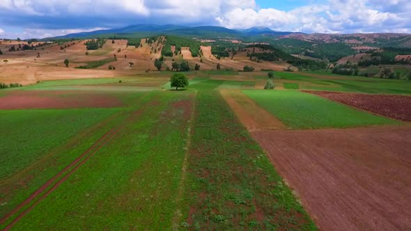 VideoHive Agricultural Land 18978369
