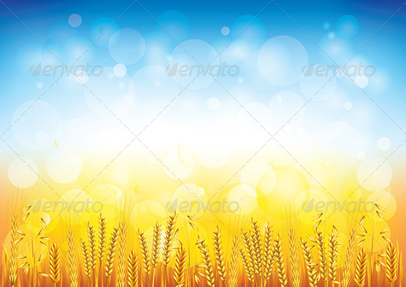 GraphicRiver Wheat Field Vector Background 5870950