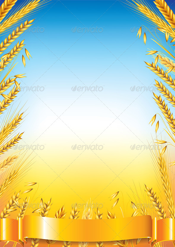 GraphicRiver Wheat Frame on Field Vector Background 5870963