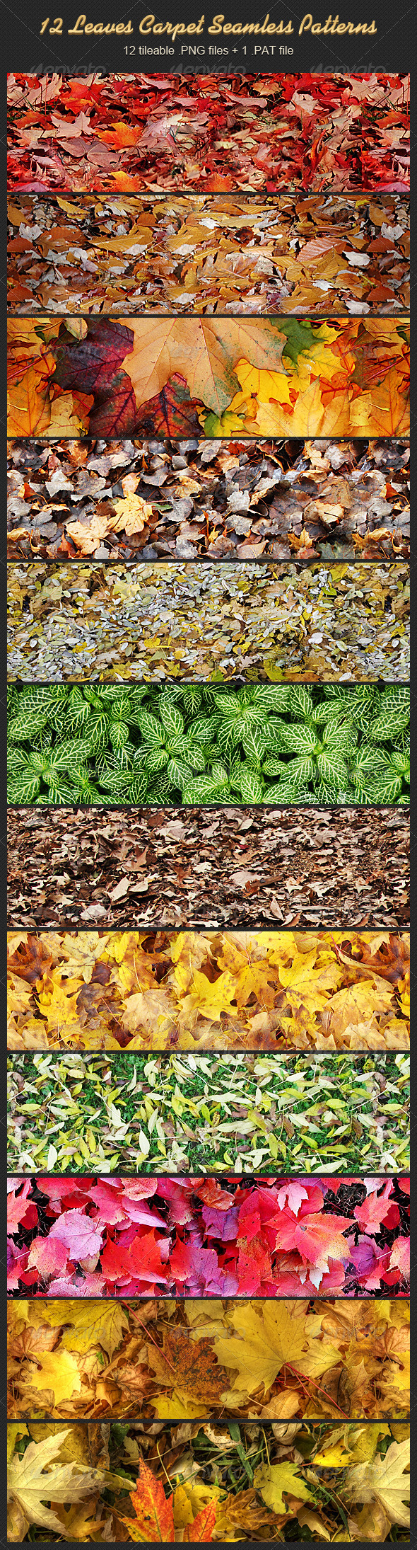 GraphicRiver 12 Leaves Carpet Seamless Patterns 5871868