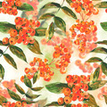 Watercolor seamless background with ash-berry - PhotoDune Item for Sale