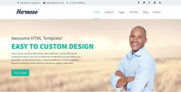 ThemeForest Hermoso Multi-Purpose Responsive HTML Template 5885954