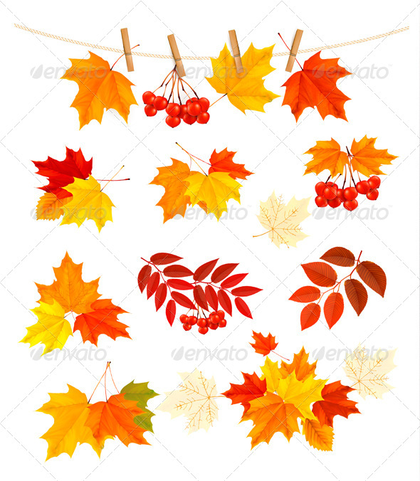 GraphicRiver Autumn Background with Colorful Leaves 5891958