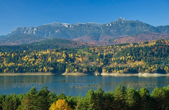 autumn landscape - Stock Photo - Images