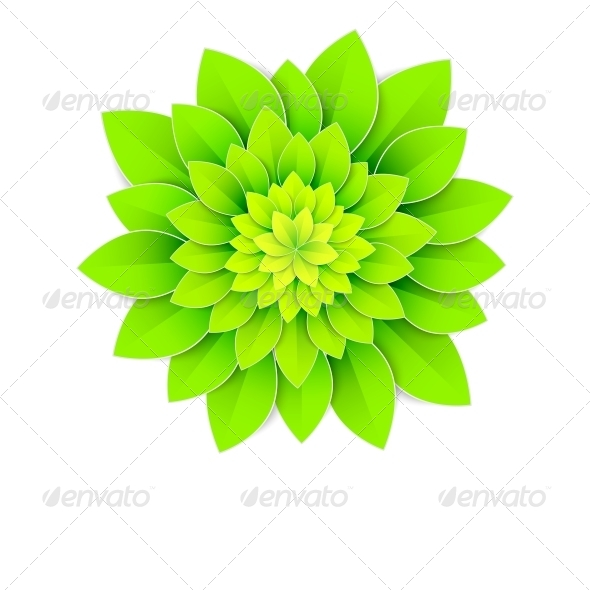 GraphicRiver Background with Green Flower 5893249