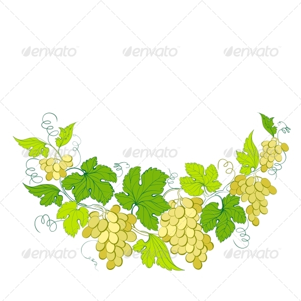 GraphicRiver Wine List Design with Grapes Decoration 5893259