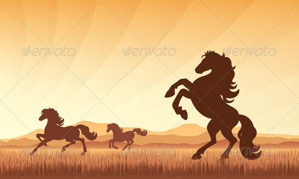 Horses on Field with Sunset Background