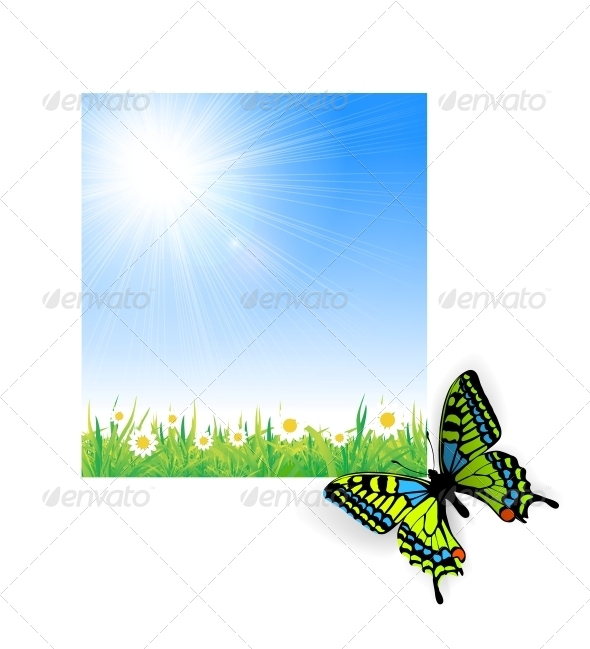 GraphicRiver Illustration of Green Grass with a Butterfly 5900307