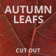 Autumn Leaves Collection - GraphicRiver Item for Sale