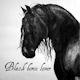 blackhorsemedia