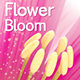Flower Bloom Logo - VideoHive Item for Sale