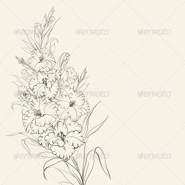 GraphicRiver Iris Flowers 5912486