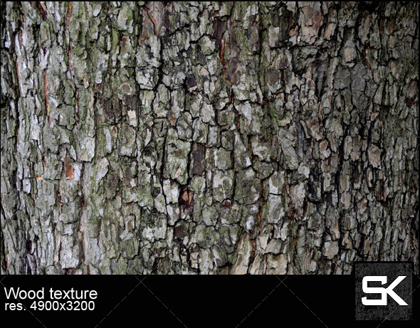 GraphicRiver Texture of tree bark 5914424