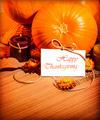 Thanksgiving day still life - PhotoDune Item for Sale