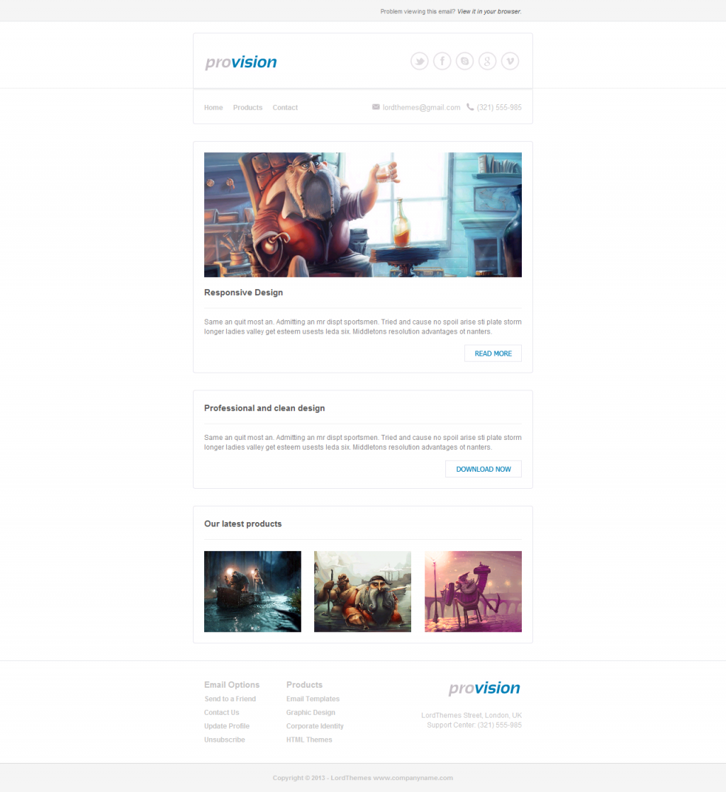 ProVision - Responsive Email Template