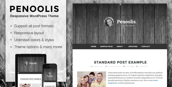 ThemeForest Penoolis Responsive WordPress Blog Theme 5923778