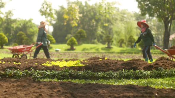 Making Garden 1