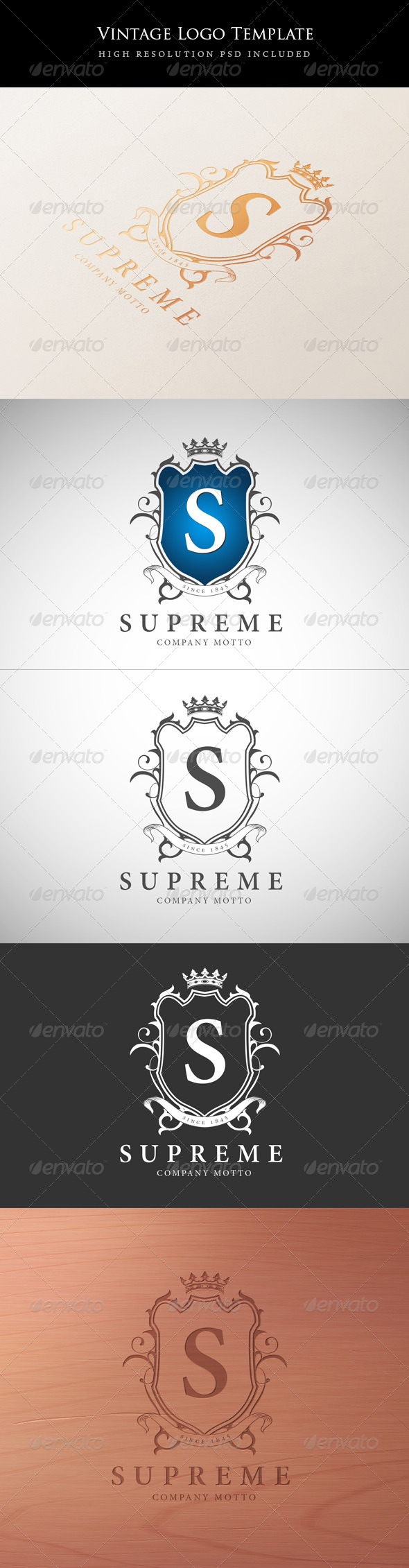 GraphicRiver Vintage Logo Template 5958089