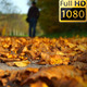 Silhouette Walks In The Park - VideoHive Item for Sale