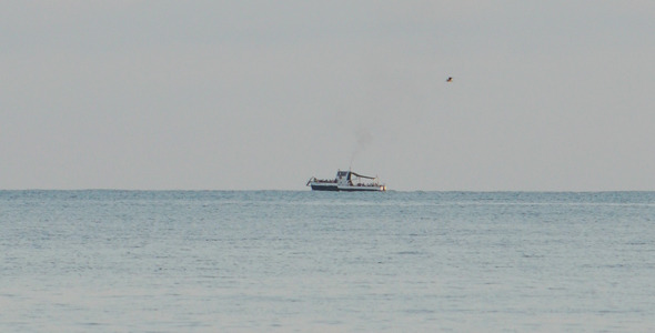 Boat Floats On The Sea