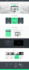 03_home-page-2.__thumbnail