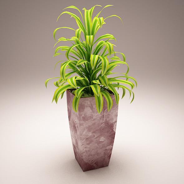 3DOcean Plant Model A 5970832