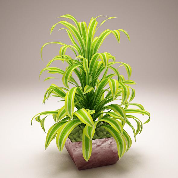 Plant Model B - 3DOcean Item for Sale