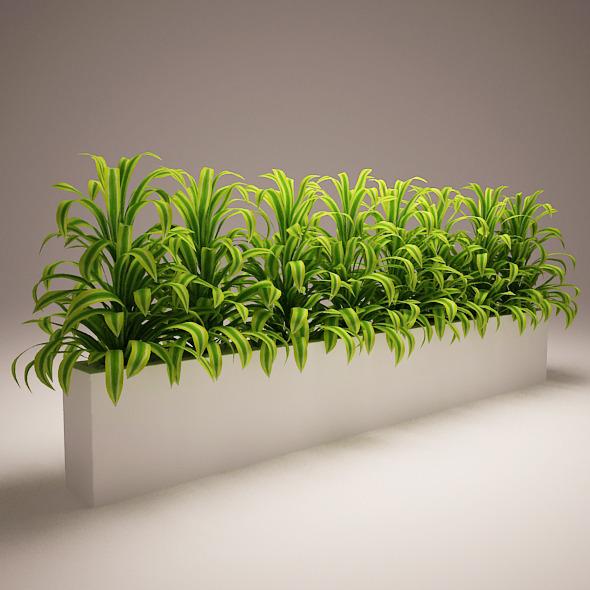3DOcean Plant Model D 5970895