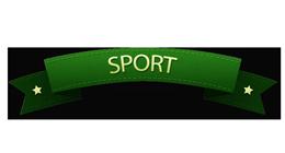 USAGE: SPORT
