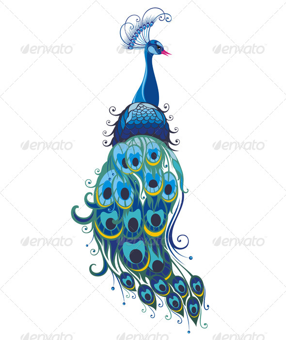 GraphicRiver Peacock 5982612