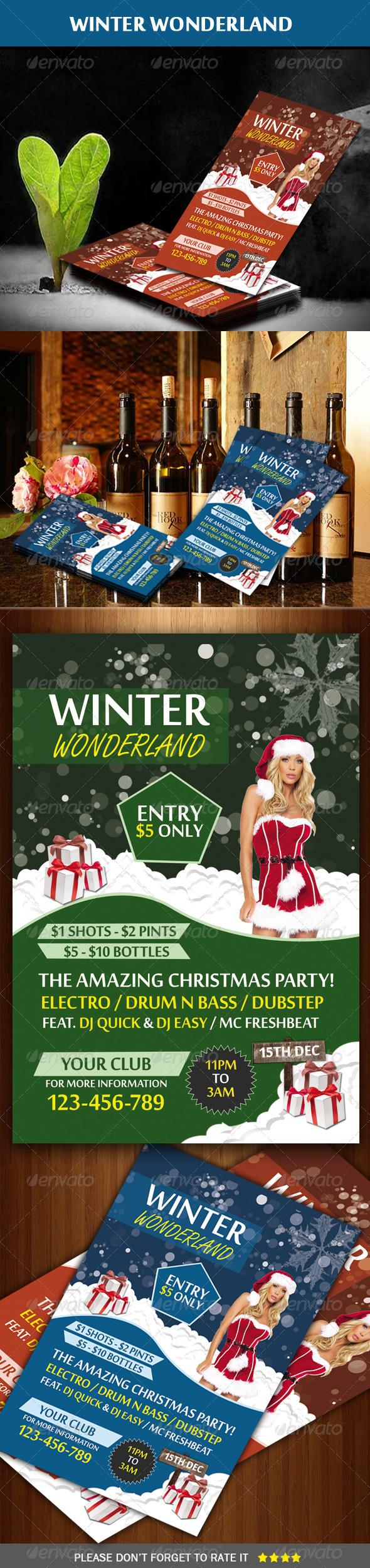 GraphicRiver Winter Wonderland Party Flyer 5965164