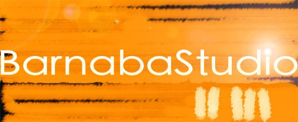 Logo barnabastudio (homepage)